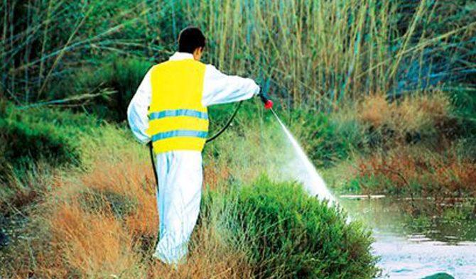 Ψεκασμοί καταπολέμησης κουνουπιών